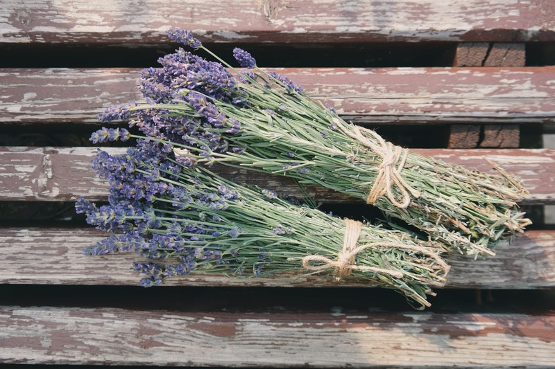 Soothing Herbs for Restful Sleep